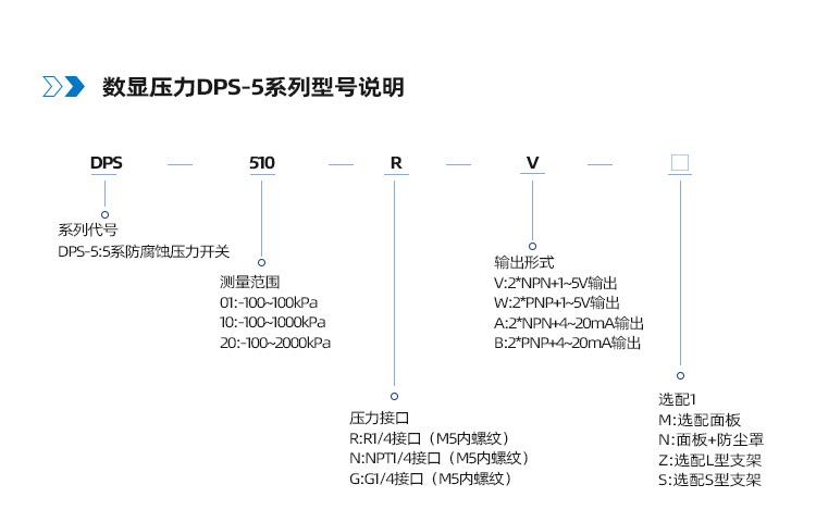 DPS5系列